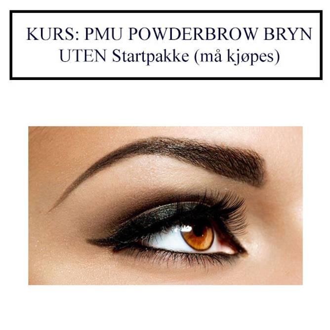 Bilde av KURS: PMU POWDER BROWS BRYN UTEN Startpakke (må