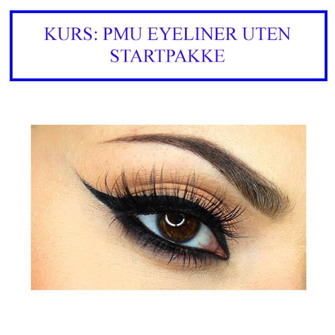 Bilde av KURS: PMU EYELINER UTEN startpakke (må ikke