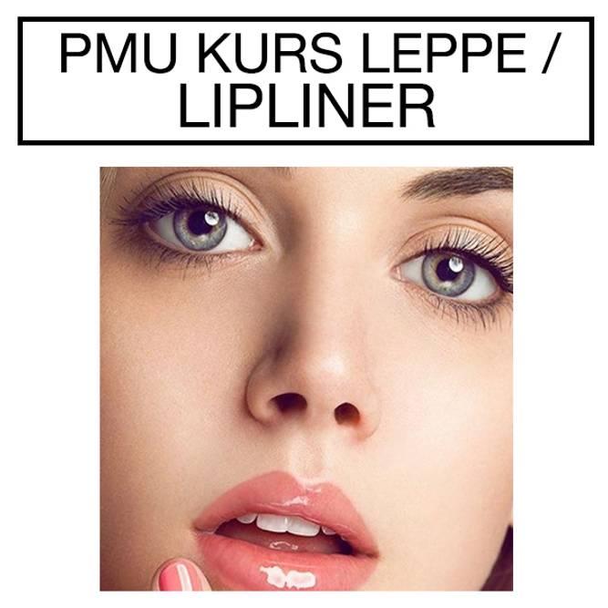 Bilde av PMU Kurs Leppe / Lipliner