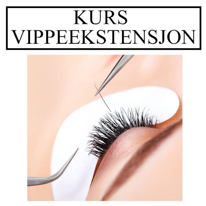 Bilde av KURS VIPPER